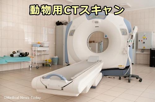MRIやCTに用いる造影剤が犬にもたらす副作用