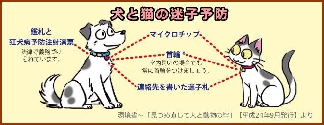 犬と猫の迷子予防のための迷子札やマイクロチップ